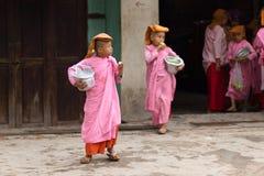 缅甸年轻尼姑 图库摄影