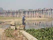 缅甸-有渔夫渔的柚木木材U Bein桥梁与网 免版税图库摄影