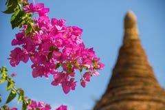 缅甸bagan寺庙轻的缅甸旅行蒲甘王国 库存照片