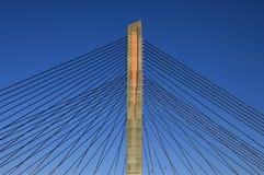 缆绳被停留的桥梁,马蒂纳斯Nijhoffbrug 库存图片