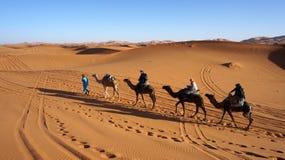 缓慢参加沙漠 免版税库存图片