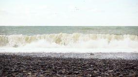缓慢的mo波浪强大打破关于Pebble海滩 影视素材