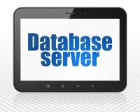 编程的概念:压片有数据库服务器的个人计算机计算机在显示 免版税库存照片
