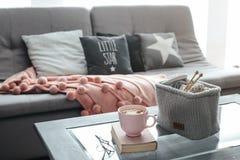 编织,书、可可粉和毯子在沙发 免版税库存照片