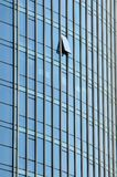 编译的玻璃墙 免版税库存图片