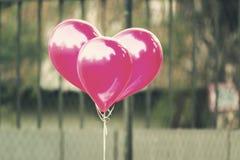 编组入心脏的桃红色气球塑造,室外在葡萄酒colo 库存照片