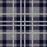 编织的方格的无缝的样式主要在无言紫罗兰色颜色 免版税库存照片