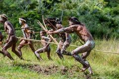 编组Dani部落的Papuan猎头者的攻击的战士 免版税库存图片