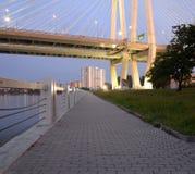 缚住内娃河的被停留的桥梁和堤防 免版税库存图片