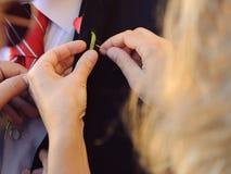 缝合的钮扣眼上插的花 免版税图库摄影