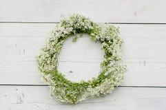 缠绕与在木背景的白花 土气样式 图库摄影