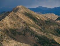 缠绕的峰顶在登上巨型的原野, Sawatch范围,科罗拉多 免版税库存图片