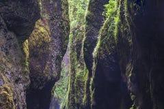 缩小的绿河峡谷 图库摄影