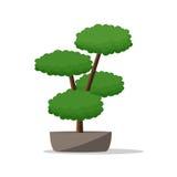 罐例证的装饰植物 免版税库存图片