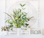 罐和花瓶的绿色室内植物在白色桌、家庭装饰和内部概念上 库存照片