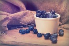 罐在土气背景的蓝莓 库存照片