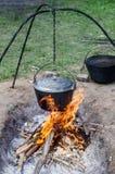 罐烹调在火的食物 免版税图库摄影
