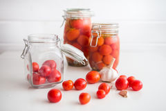 罐用卤汁泡的蕃茄 库存照片