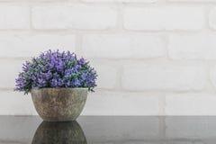 罐的特写镜头人为紫色植物为在黑玻璃桌和白色砖墙被构造的背景上装饰与拷贝空间 免版税图库摄影