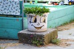 罐的艺术设计有植物的 与一朵花的微笑在罐 家庭乐趣 库存图片