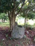 水罐老挝谷 免版税库存照片