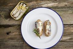 罐装沙丁鱼开胃菜 库存照片