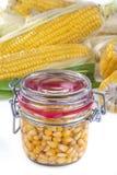 罐装玉米 库存照片