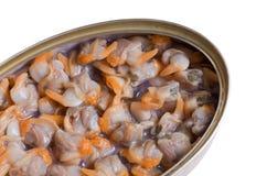 罐装蛤蜊 免版税库存图片