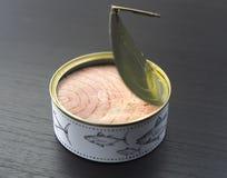 罐装金枪鱼 免版税库存图片
