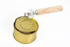 罐装鱼三文鱼或金枪鱼在开放金属罐头 库存图片