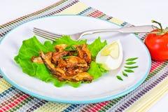 罐装鱼用在莴苣的鸡蛋 库存图片