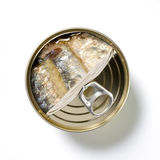 罐装鱼 免版税库存图片