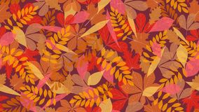 网、纺织品或者广告横幅的秋叶无缝的样式背景 免版税库存图片