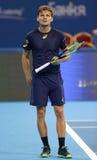 网球员大卫・高芬 免版税库存照片