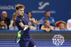 网球员大卫・高芬 免版税图库摄影