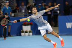 网球员格里戈尔・季米特洛夫 免版税图库摄影