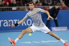网球员格里戈尔・季米特洛夫 免版税库存照片