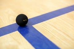 黑网球在木法院说谎 图库摄影