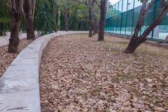 网球场室外石位子  免版税图库摄影
