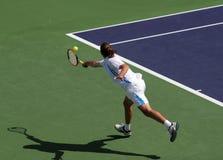 网球 免版税库存图片