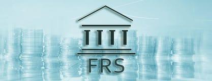 网站倒栽跳水横幅 美国联邦储备系统 FRS 企业在抽象背景的财务概念 库存例证