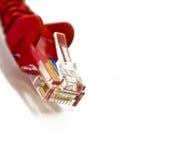 网络插件白色 免版税库存照片