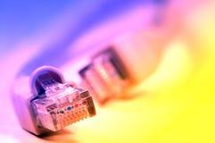 网络插件rj45 库存照片
