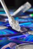 网络插座和缆绳 库存图片