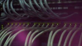 网络有绿色被带领的闪动的盘区开关 股票视频