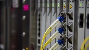 网络电信纤维光学缆绳插接线被连接的和眨眼睛被带领的状态在数据中心 股票录像