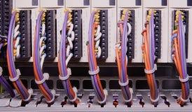 网络缆绳被连接到开关-接近数据中心硬件 色的多电汇 库存图片