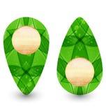 网络设计的Eco友好木图标 免版税库存图片