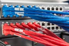 网络插孔和补丁程序电缆 免版税库存图片
