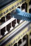 网络缆绳和开关 免版税库存照片
